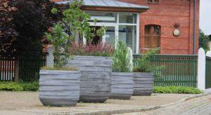 beton pflanzkübel ring designe