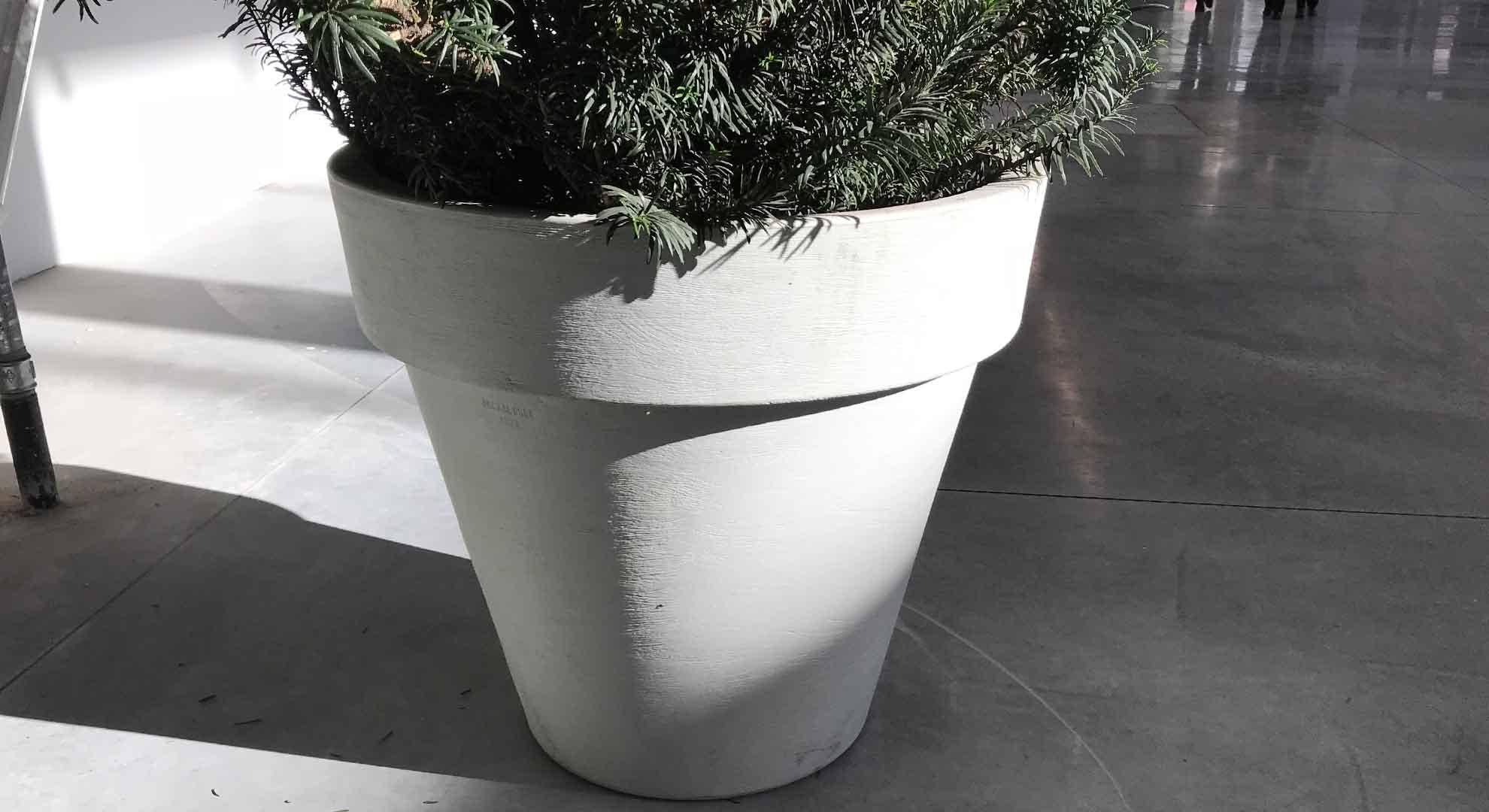 pflanzkübel für den innenbereich