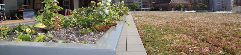 pflanzkübel metall auf der terrasse